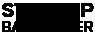 Startup Barometer